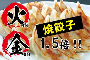 火・金は餃子の日!! (店内飲食のみ)