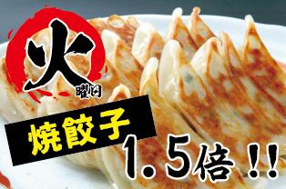 火曜は餃子の日!! (店内飲食のみ)